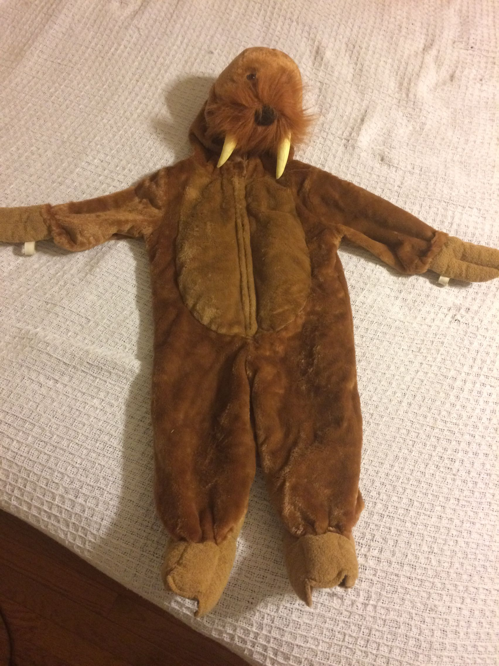 WALRUS costume! Seriously adorable 18 months