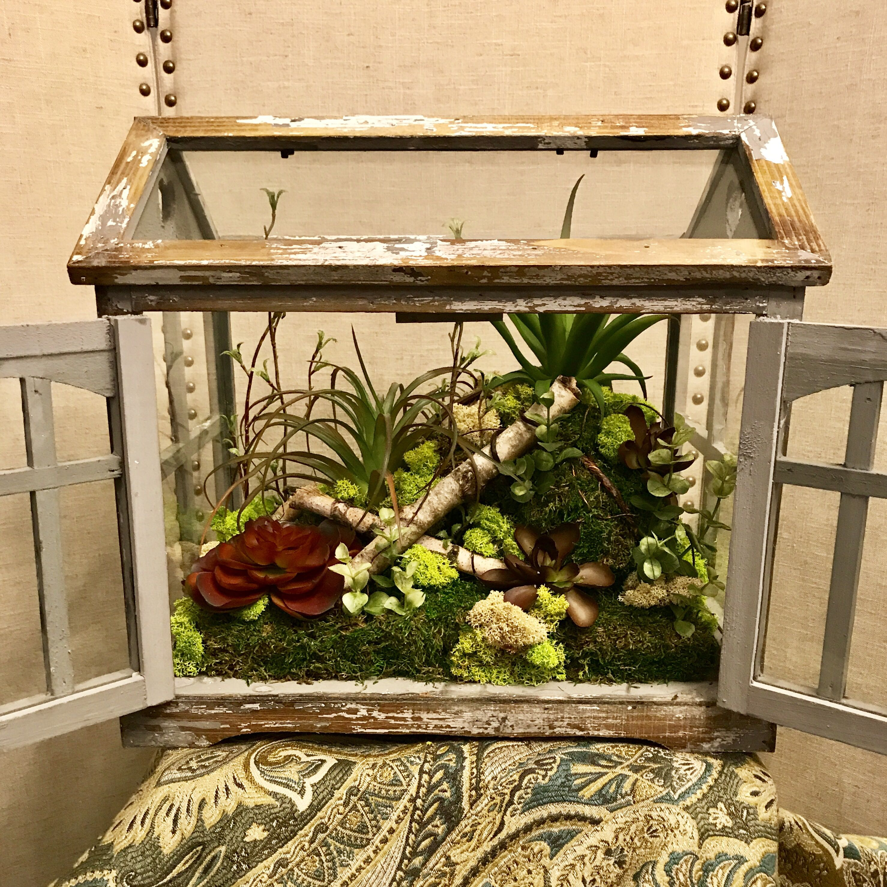 Large chippy farmhouse Terrarium with lasting succulents