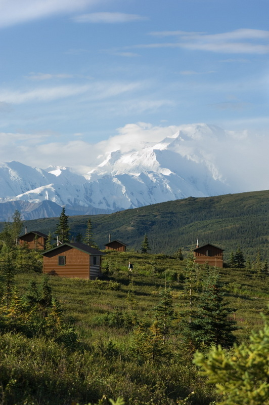 Alaska wilderness lodge camp denali for Denali national park cabins