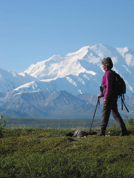 Alaska Lodging About Camp Denali And North Face Lodge