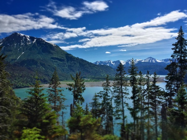 Hiking over the Saddle Trail in the Kachemak Bay State Park, across from Homer, Alaska.
