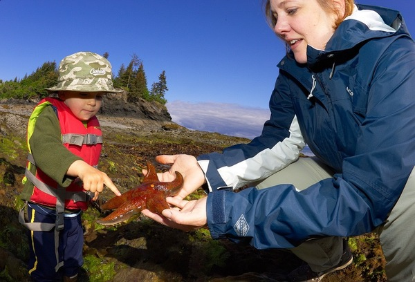 Tidepooling is a great family activity in Halibut Cove, Alaska.