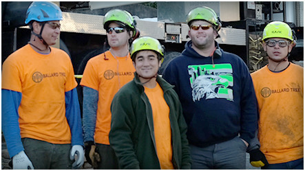 Ballard Tree Service employees