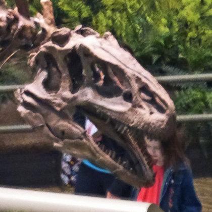 Dinohead