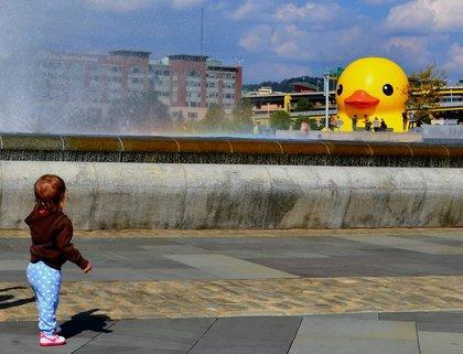 Ducky_2013