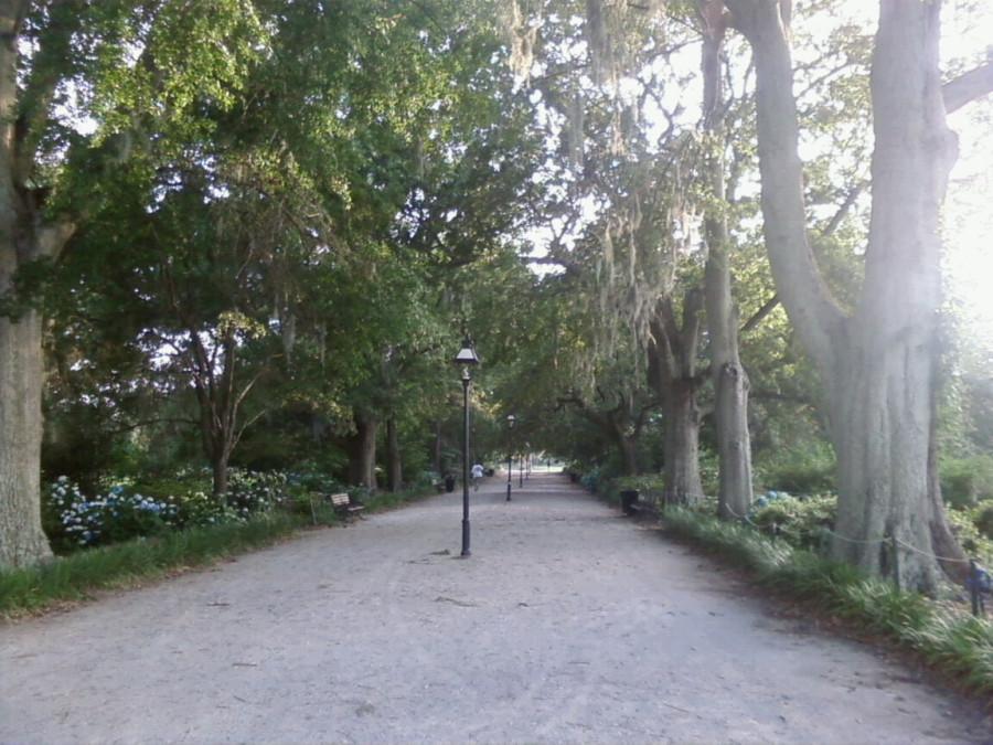Hampton_Park_2