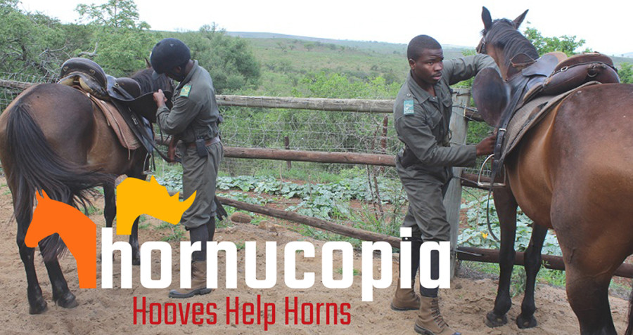 Hornucopia-CoverPhoto