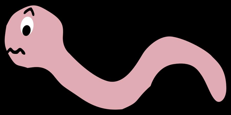 earthworm-154441_960_720