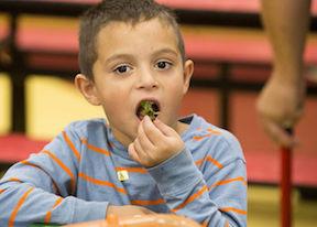 tasting kale chips in des moines