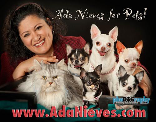 Ada Nieves