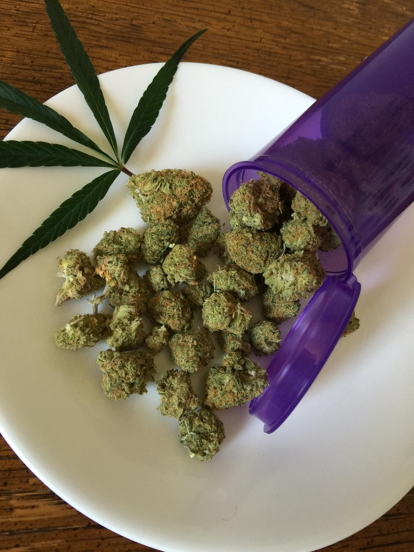 cannabis-1418329_1920