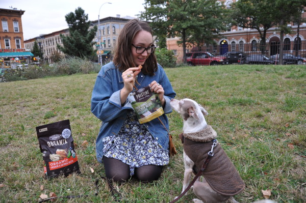 Erica gives Baxter a Chicken Sausage Recipe treat from Castor & Pollux (Jordan Werner Barry)
