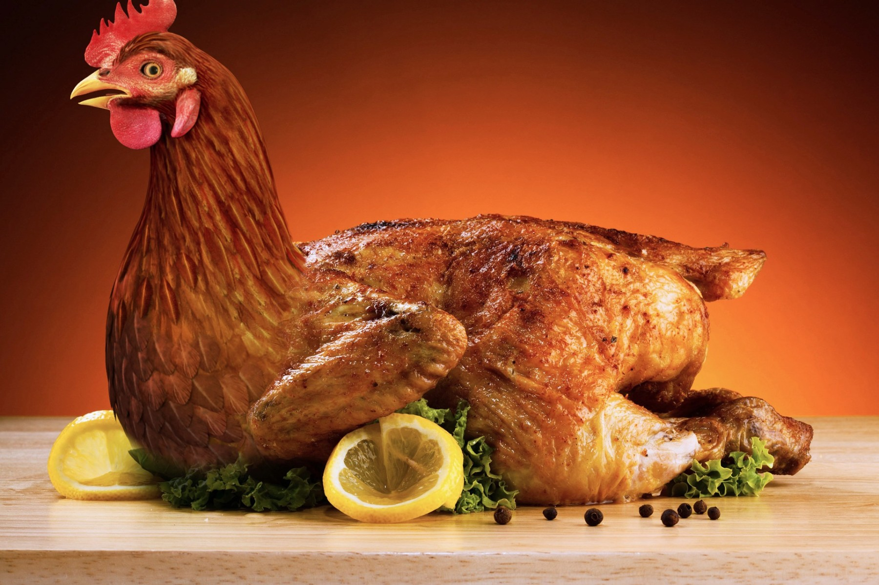 poultry-3297369_1920