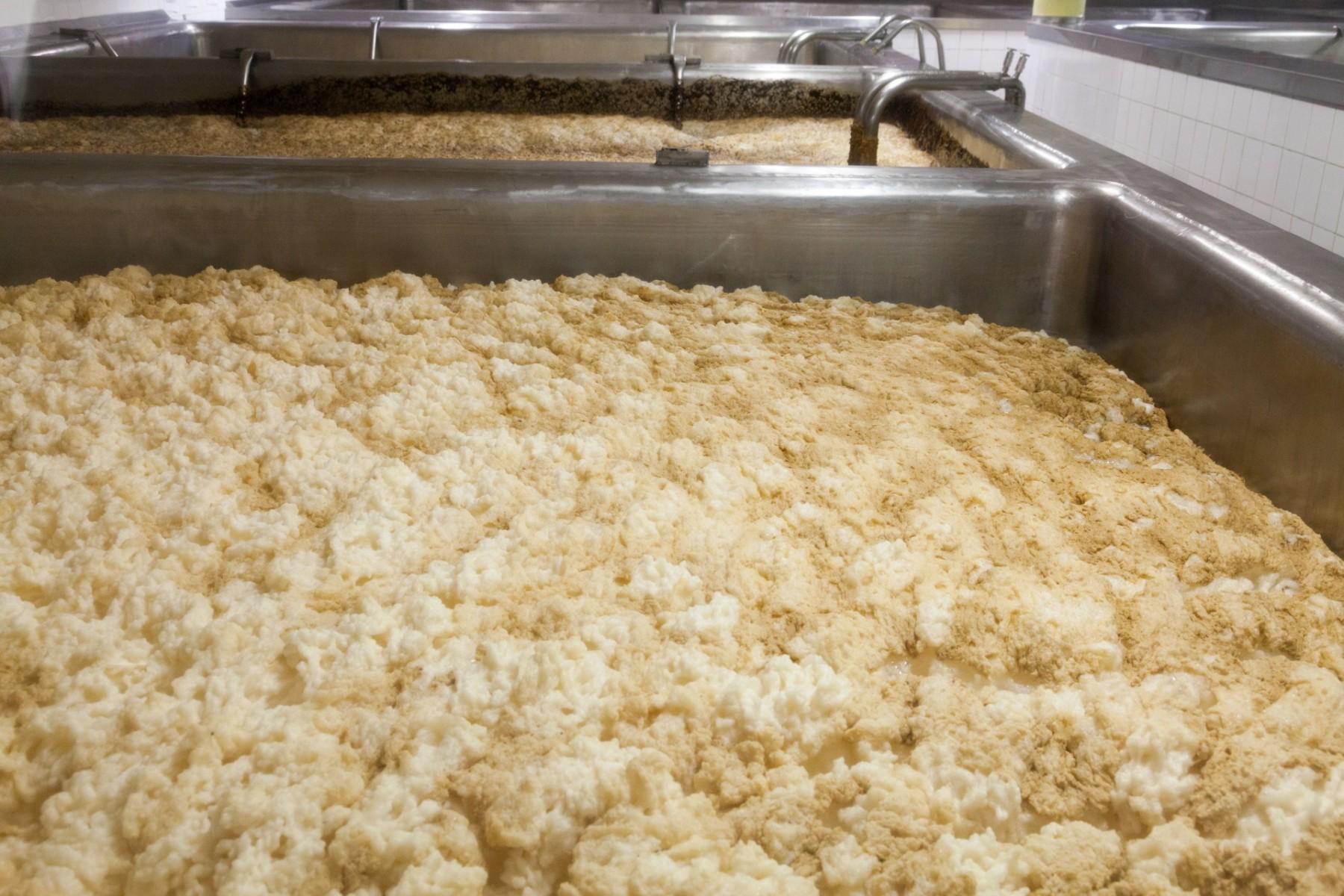 beer-fermentation-14548611941j4 - Rachel Jacobs