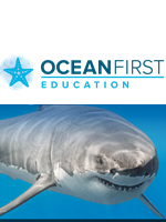 Ocean Classrooms - Save 25% on Marine Science Curriculum