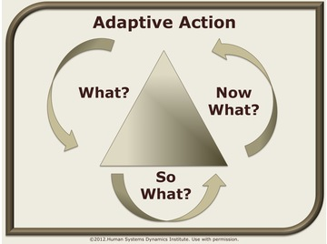 Adaptive action.wiki