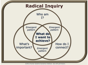 Radical inquiry.wiki