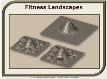 Fitness landscapes.wiki
