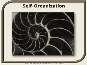 Self organization.wiki.