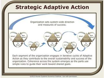 Strategic adaptive action