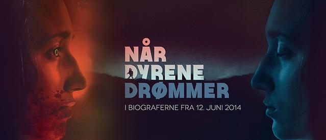 Ndd_banner1