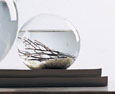 Self-Sustaining EcoSphere