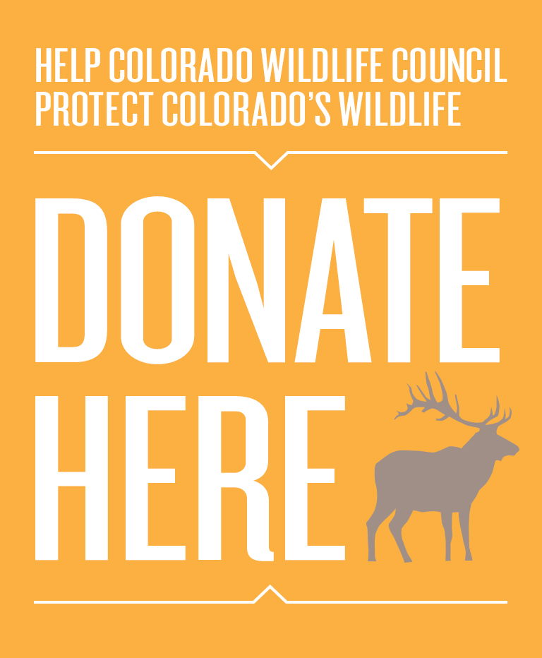 Wildlife council for Colorado fishing license fees