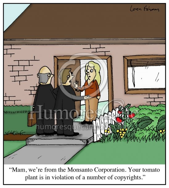 monsanto lawsuit over a tomato plant cartoon