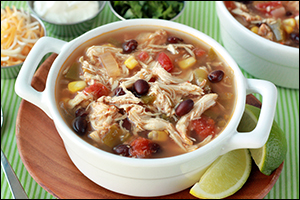 ... Slow-Cooker Recipes: Tex-Mex Chicken Stew, Buffalo Shredded Chicken