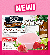 So Delicious Coconut Milk Non-Dairy Frozen Dessert Organic Minis