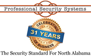 Website for Professional Security Systems