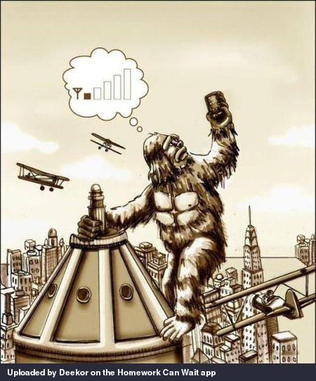 Misunderstood King Kong