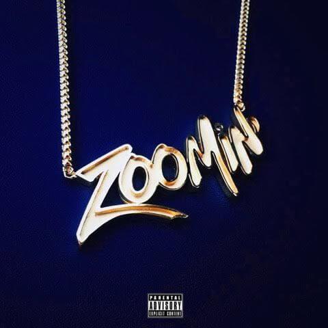 hit-bot zoomin