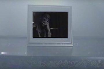 "C Biz & M Lo ""Big Bro Lil Bro"" Video"