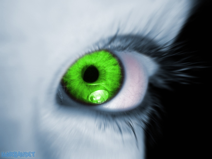 Greeneyev2