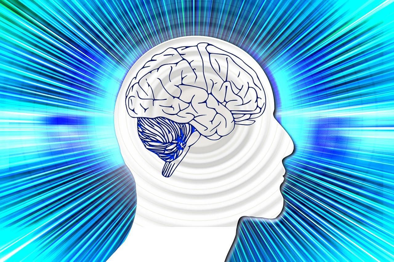 O que é Psicologia Cognitiva