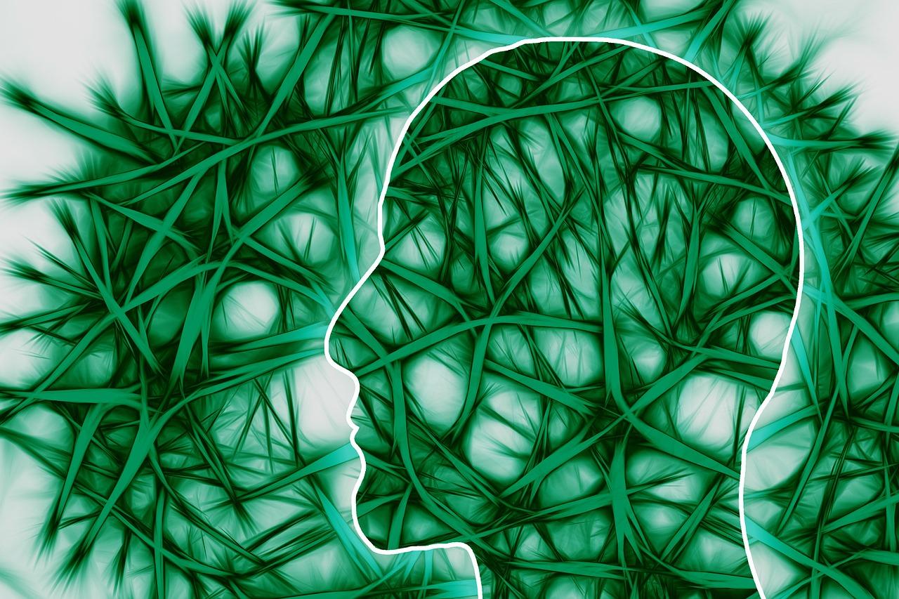 Neurociência / Copyright: Pixabay