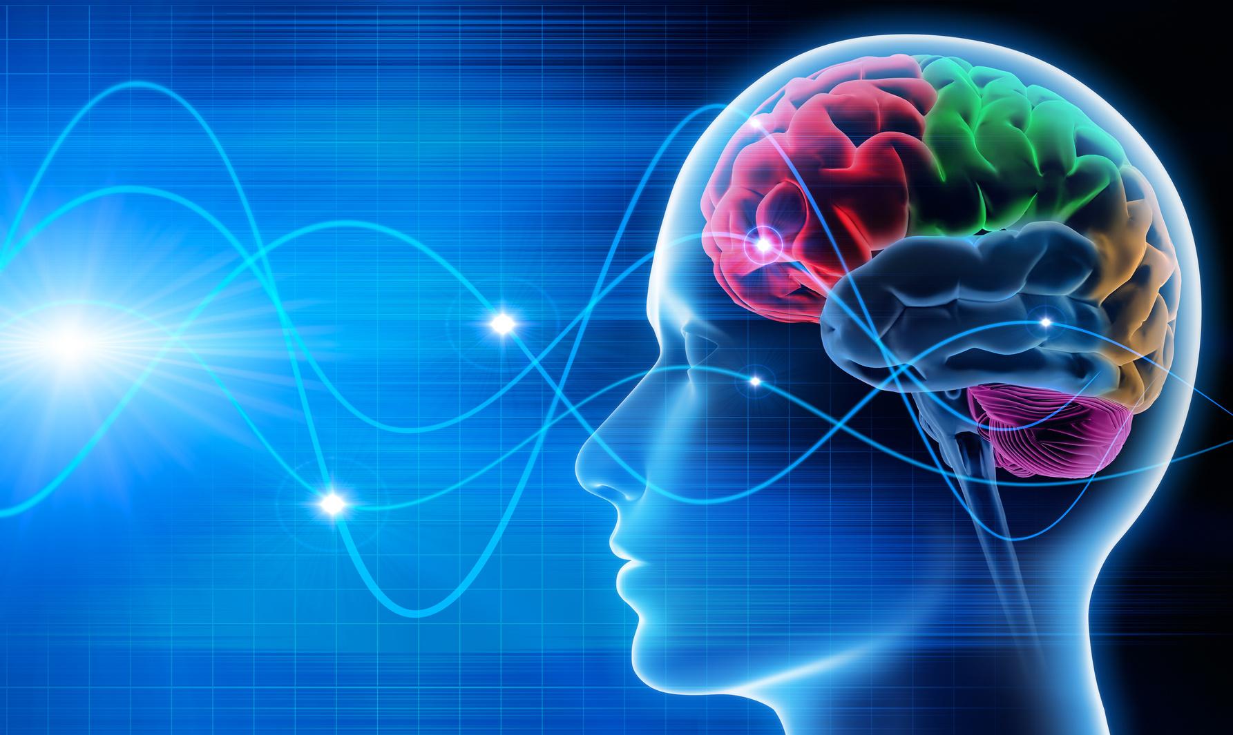 Resultado de imagem para Neurociência