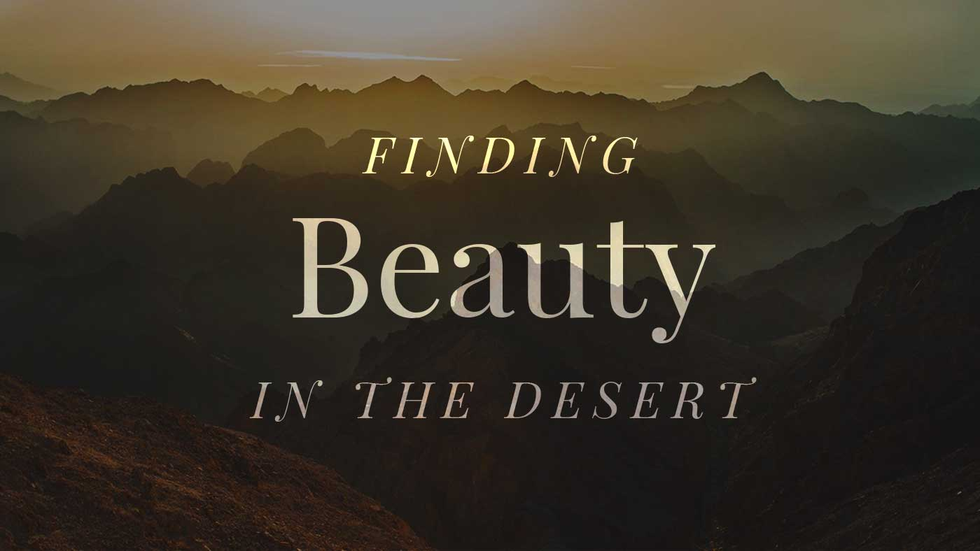 Finding Beauty in the Desert