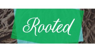 Womens Fall 2018 Rooted