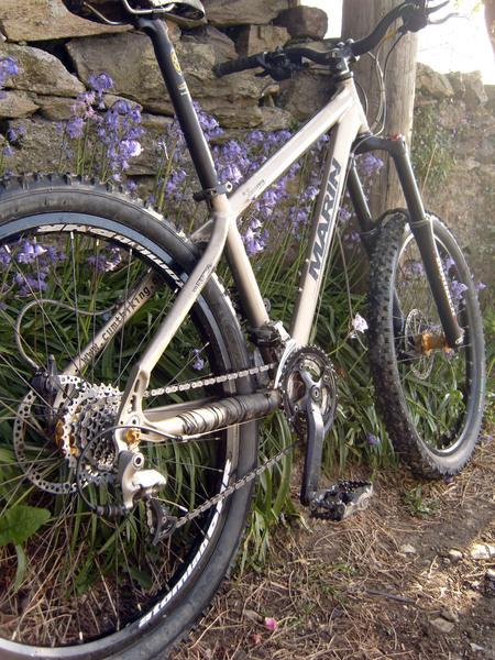 mountin biking  Marin_large