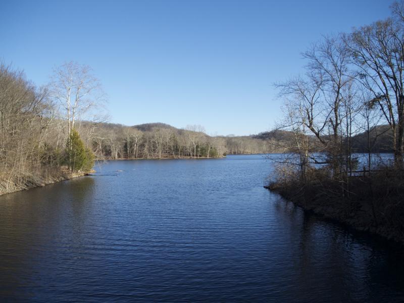 Radnor lake 1
