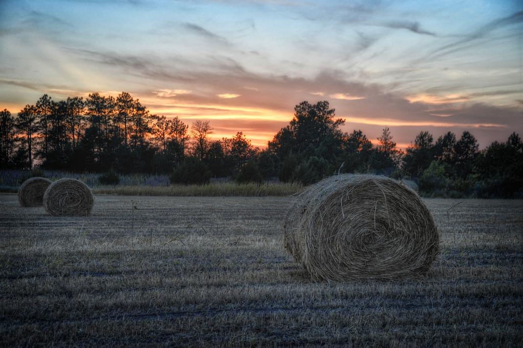 """Sunset in Cherry County, Nebraska"" by Diana Robinson via Flickr Creative Commons"