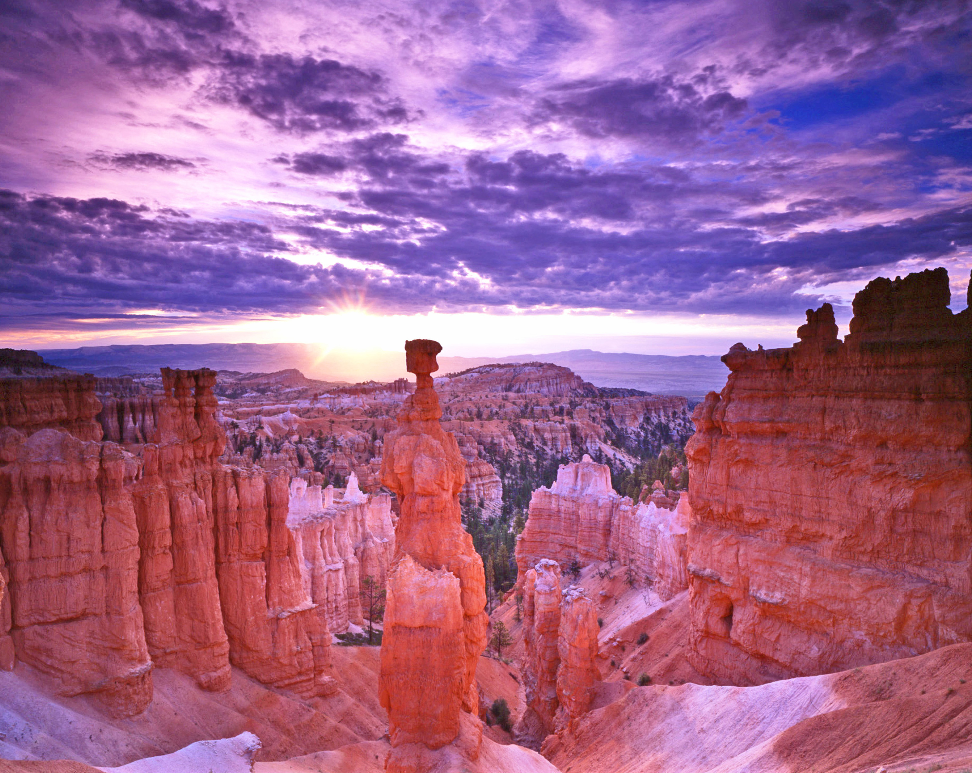 Image Result For How To Start A Garden In Utah