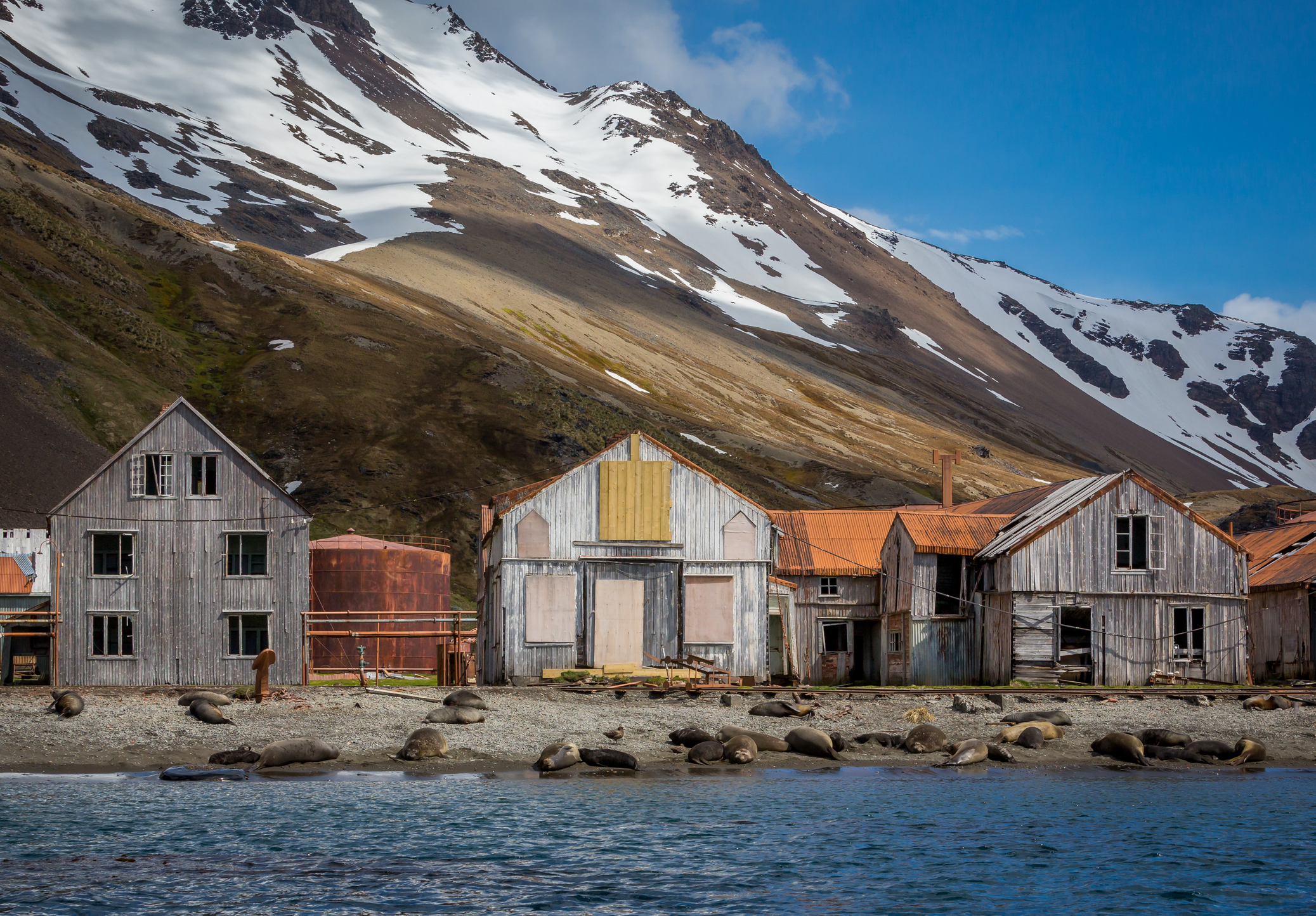 The Whaling Village Where Shackleton was Rescued.