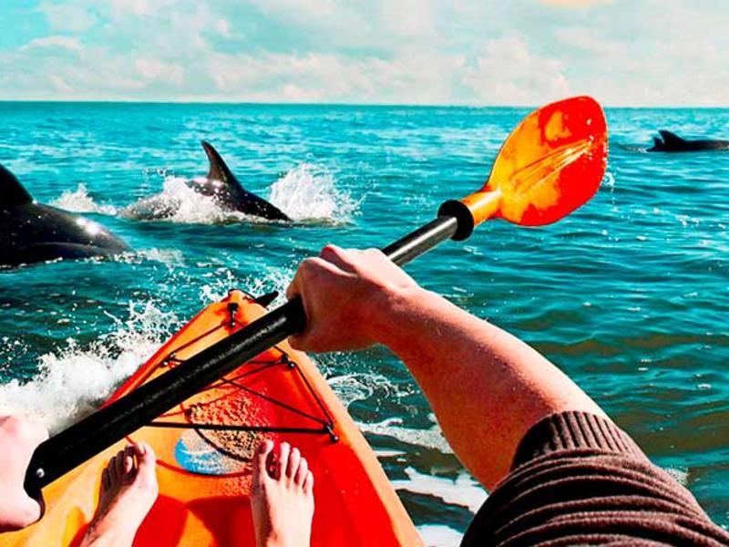 2009   close encounters kayaking 1