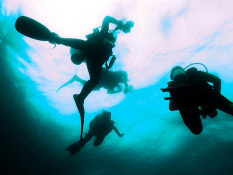 Top 10 scuba diving vacations in latin america - Best dive trips ...