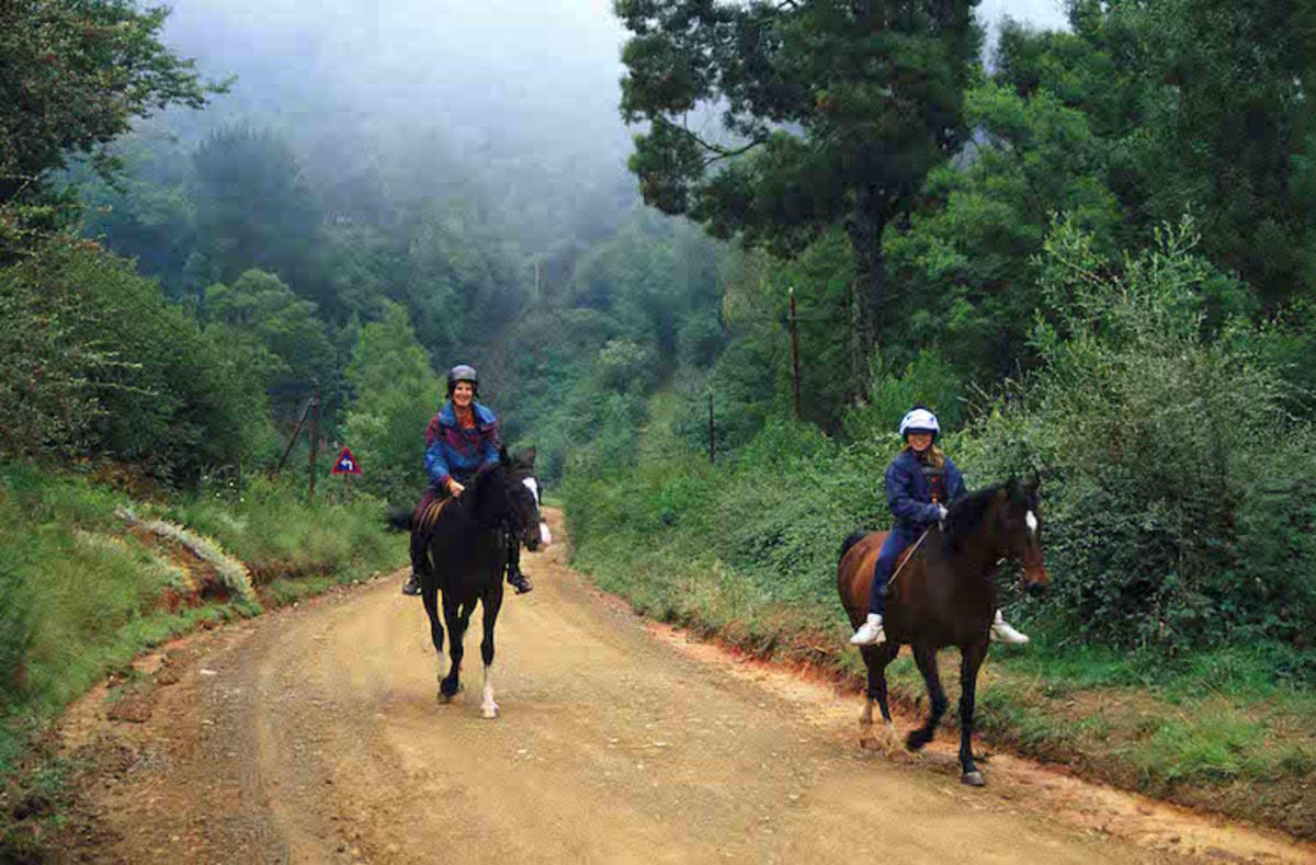 """Hogsback Horse Trail - South Africa"" by South African Tourism via Flickr Creative Commons"