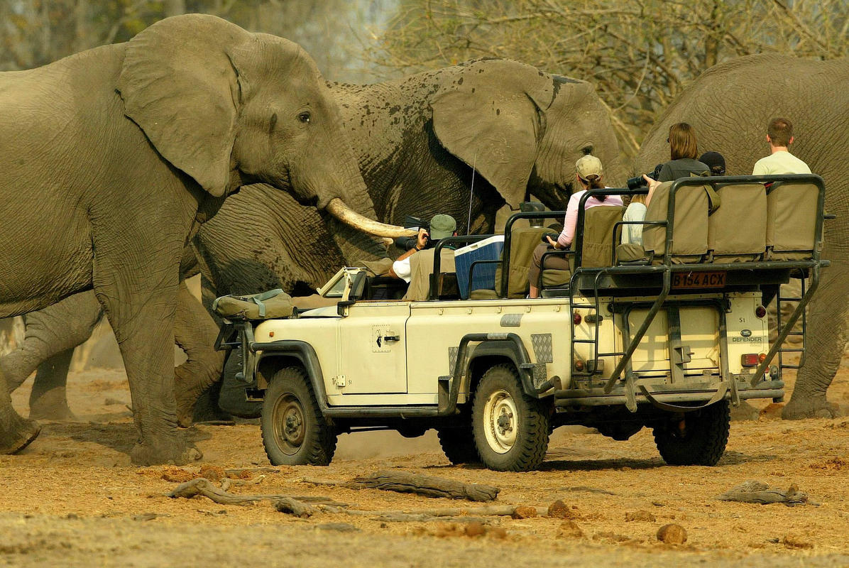 """Elephant Safari"" by Roderick Eime via Flickr Creative Commons"