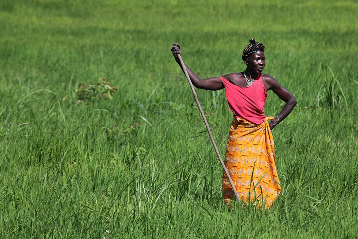 Sierra Leone 0002 by Steve Evans via Flickr Creative Commons